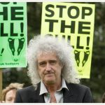 brian_may_stop_the_cull_6875269