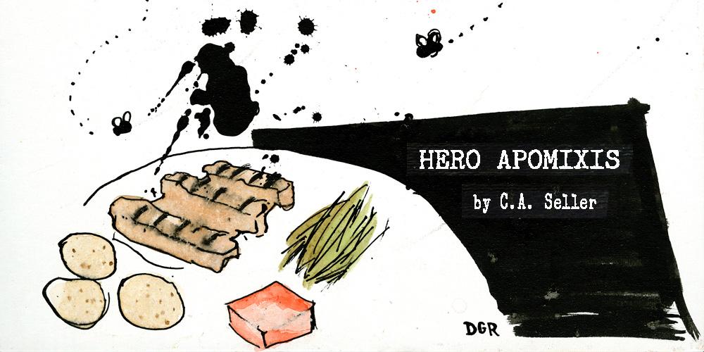 hero2-1