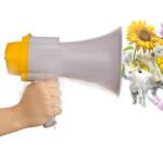 daffodilx