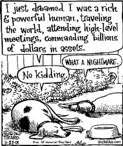 doggy-nightmare (1)