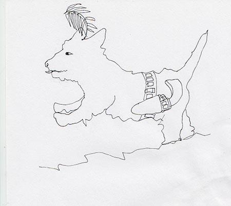 dt dog 2