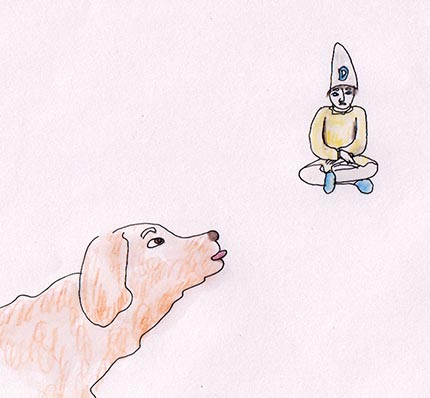 dt dog