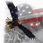 eagles x