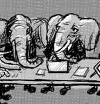 elephantx