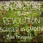 permaculture-is-revolution-582683_3924468344660_560012871_n