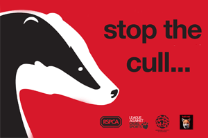 stop-the-cull